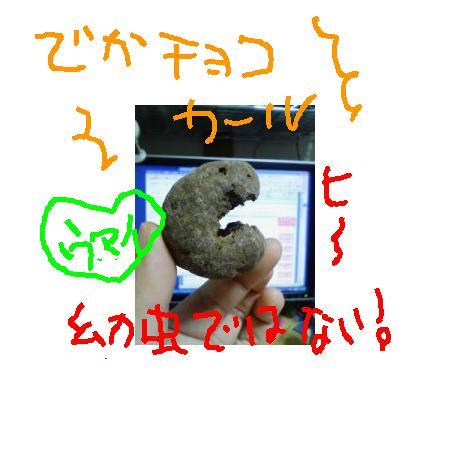 2008612145817.jpg