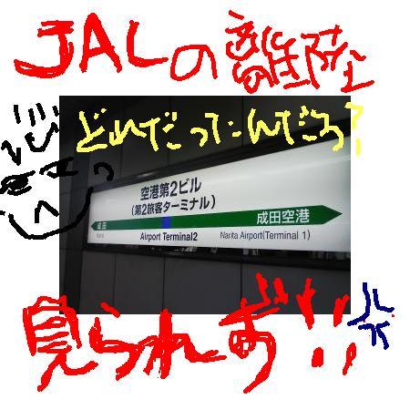 2008613195835.jpg