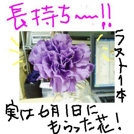 2008617123854.jpg