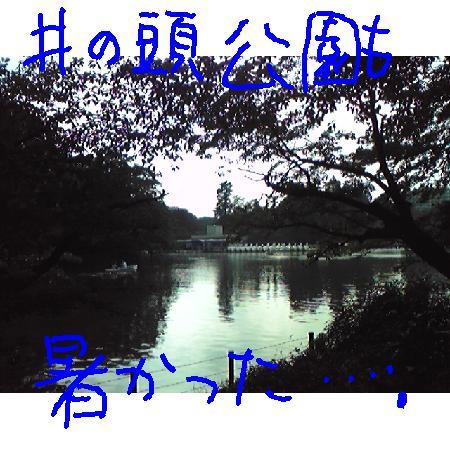2008717162630.jpg