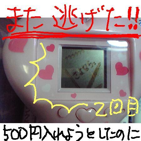 20081229144815.jpg