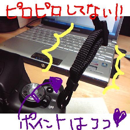 20095245622.jpg